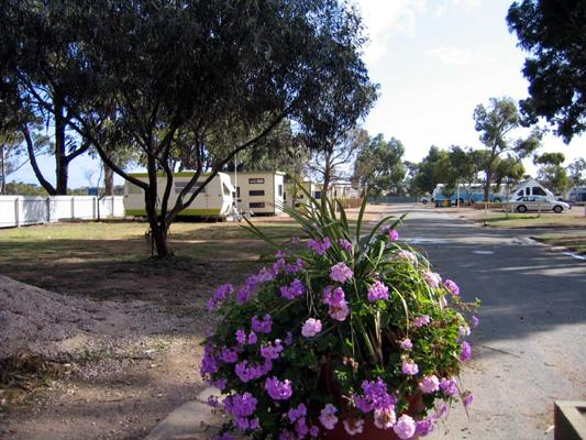 Streaky Bay Foreshore Tourist Park - Streaky Bay: Good paved roads throughout the park