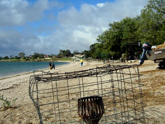 Streaky Bay Foreshore Tourist Park - Streaky Bay: The park is right beside this beach