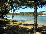Foreshore Caravan Park - Nambucca Heads: The park is located beside the river.