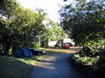 Newmarket Gardens Caravan Park - Ashgrove Brisbane: Area for tents and camping