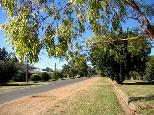 The Golden Grain Hotel Caravan Park - Pallamallawa: Main Street