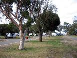 Tumby Bay Caravan Park - Tumby Bay: Area for tents and camping